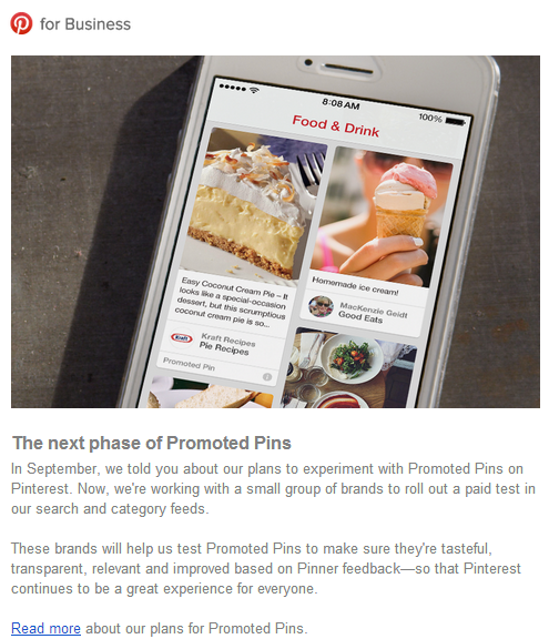 Pinterest Paid ads promoted pins